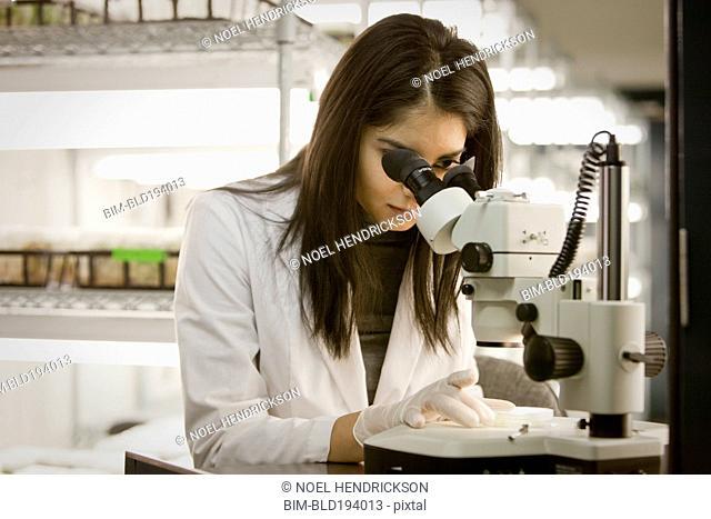 Indian scientist using microscope in laboratory
