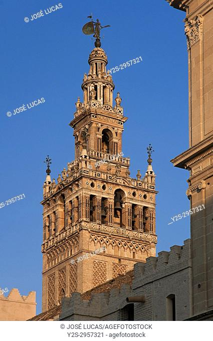 Giralda tower, Cathedral, Seville, Region of Andalusia, Spain, Europe