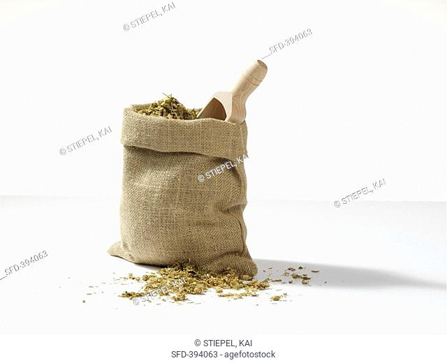 Maize silage in jute sack with scoop