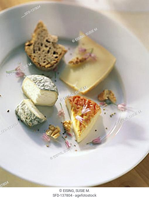 A Variety of Cheese on a Plate