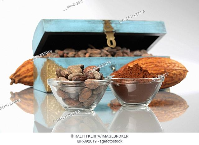 Cocoa powder, cocoa beans and cacao pods