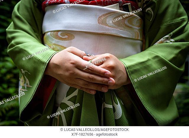 Detail of 'maiko' geisha apprentice from Ishihatsu tea house o-chaia Geisha's distric of Miyagawacho Kyoto  Kansai, Japan
