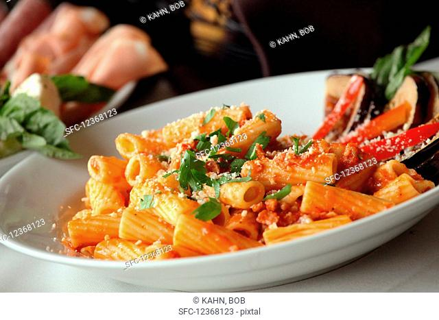 Rigatoni with tomato sauce on plate (Italy)