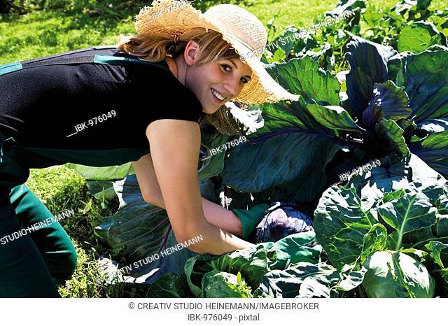 Female gardener in vegetable patch