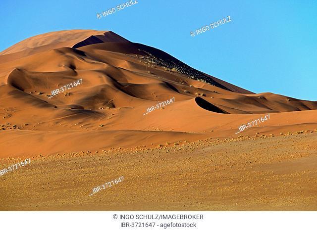 Huge sand dunes in the morning light, Sossusvlei, Namib Desert, Namib Naukluft Park, Namibia