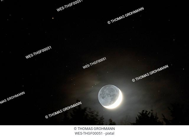 Germany, Hesse, Hochtaunuskreis, moon with grey light rising above trees with stars in background