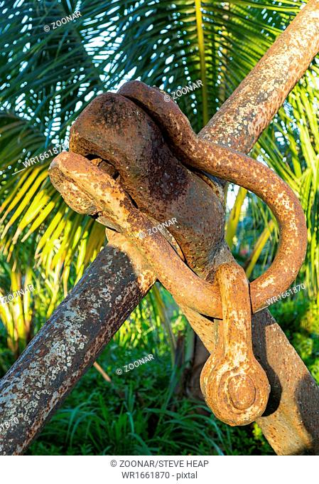 Rusty chain links on large anchor in garden