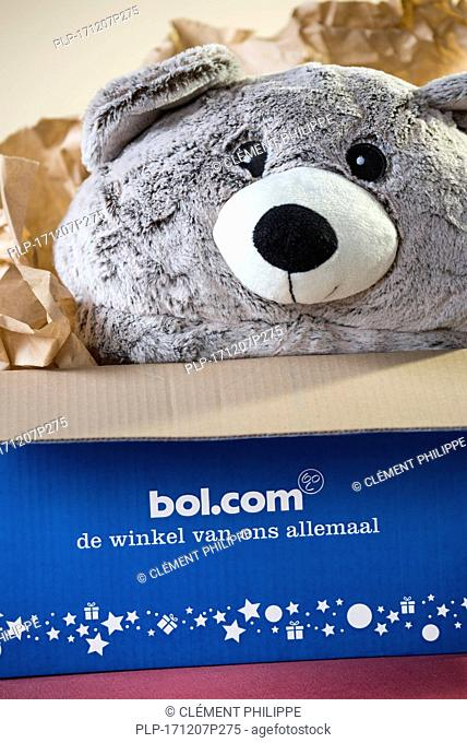 Cuddly bear / teddy bear present in open cardboard box bought at bol.com, leading webshop in the Netherlands for books, toys and electronics