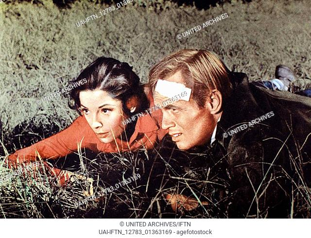Der Sonne entgegen aka. Run for the Sun, USA 1958 Regie: Roy Boulting Darsteller: Richard Widmark, Trevor Howard, Jane Greer