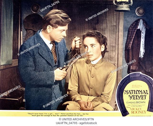 National Velvet, aka Kleines Mädchen, großes Herz, USA, 1944, Regie: Clarence Brown, Darsteller: Elizabeth Taylor, Mickey Rooney