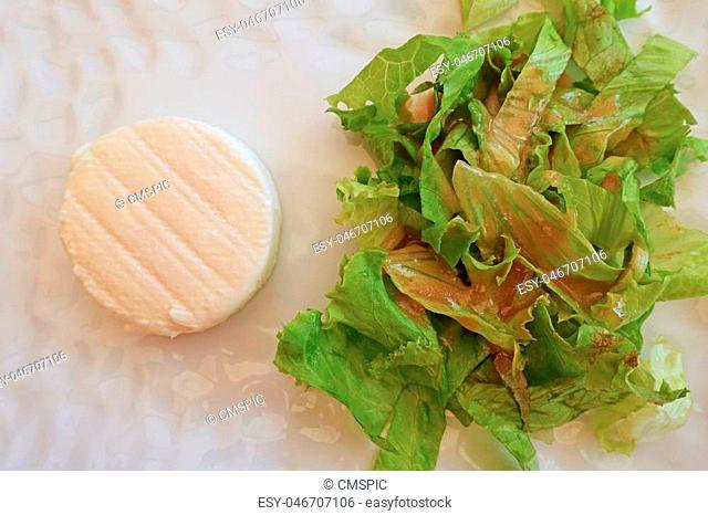 Goats cheese and green salad on white plate