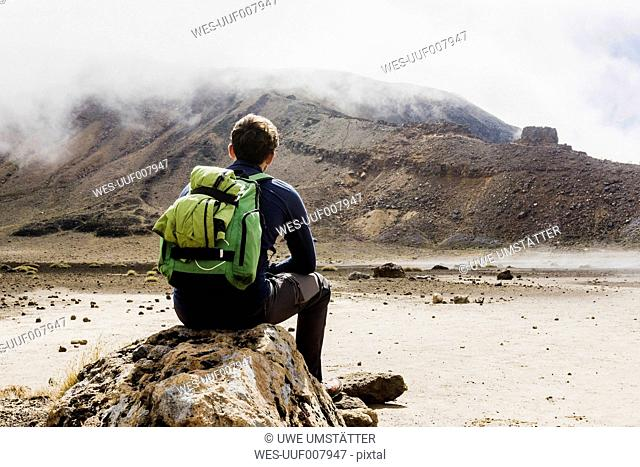 New Zealand, Tongariro National Park, back view of hiker with backpack looking to Tongariro Mountain