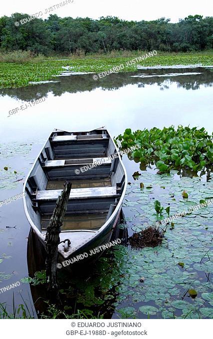 Boat, Pond, Flotation, Empuxo, Miranda, Mato Grosso do Sul, Brazil