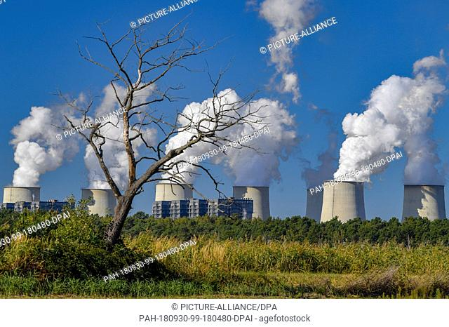 30 September 2018, Brandenburg, Peitz: A dead tree stands in front of water vapour clouds rising from the cooling towers of the Jänschwalde lignite-fired power...