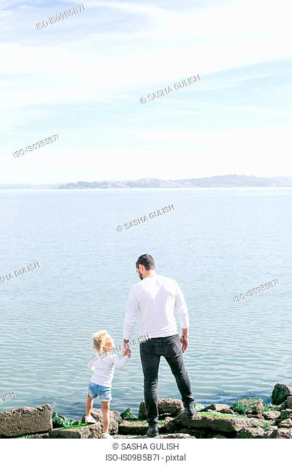 Rear view of mature man and daughter at water's edge on coast