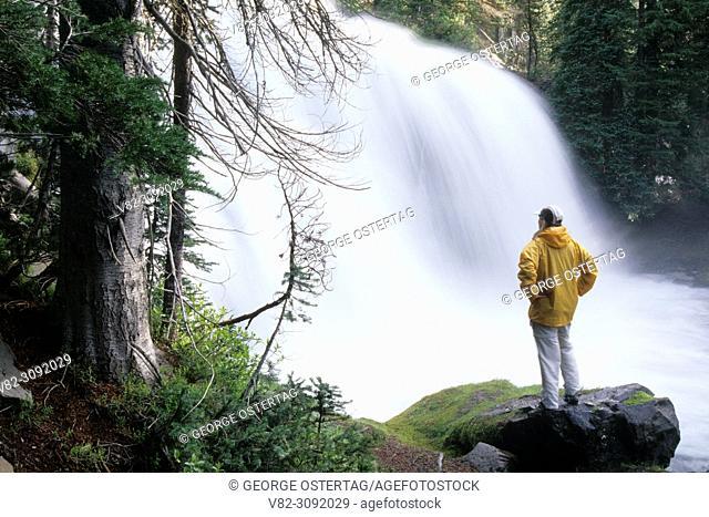 Falls Creek Falls, Three Sisters Wilderness, Deschutes National Forest, Oregon