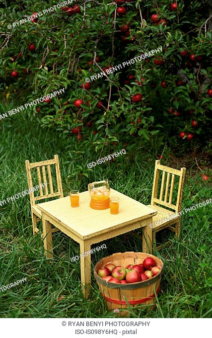 Table and chairs with fresh apple juice