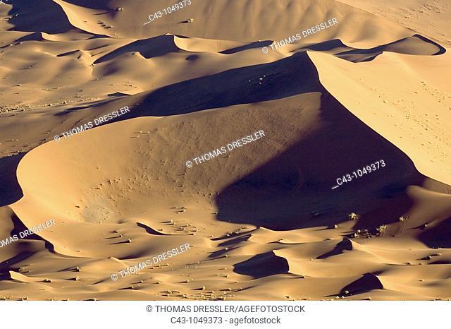Namibia - Sand dunes in the Namib Desert  Namib-Naukluft Park, Namibia