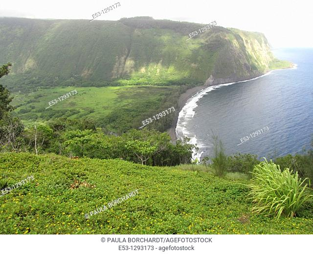 Waipi'o Valley, Big Island, Hawaii, USA