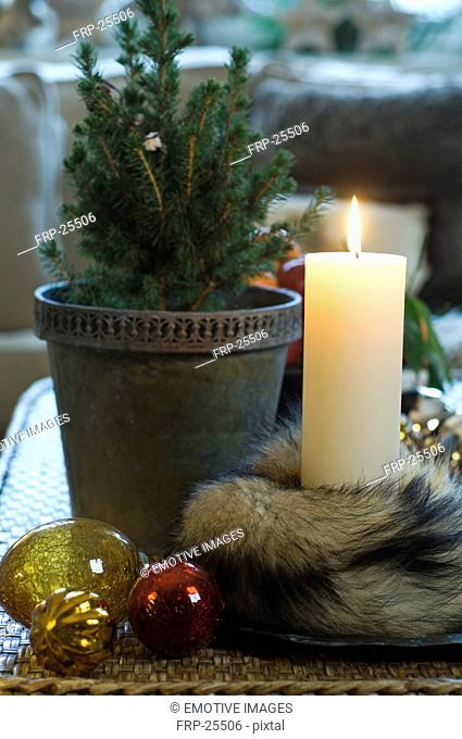Burning candle and potted plant