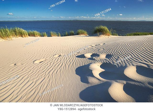 Mooving dunes in the Slowinski National Park, Poland, Europe