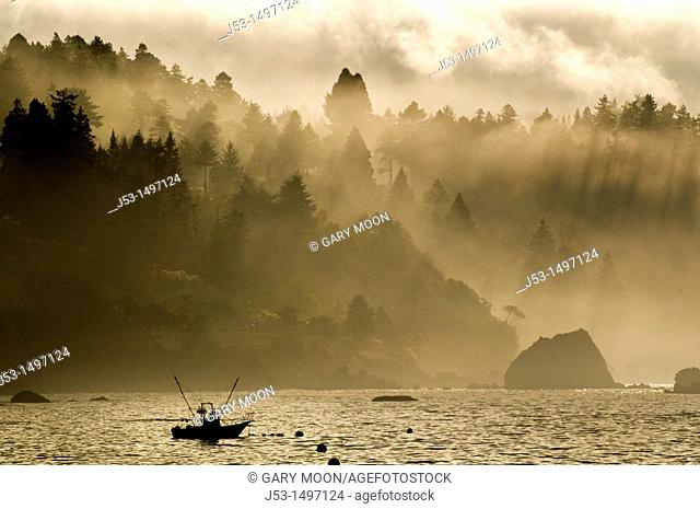 Fishing boat, foggy morning, Pacific Ocean, Trinidad California USA