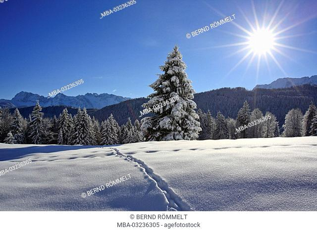 Germany, Bavaria, Upper Bavaria, Werdenfelser Land (region), Gschwandtnerbauer, winter scenery, Karwendel mountain range