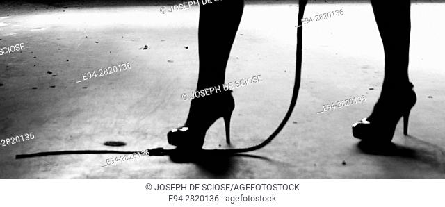 Silhouette of a woman's legs wearing high heels with the line of a whip on the floor, black and white