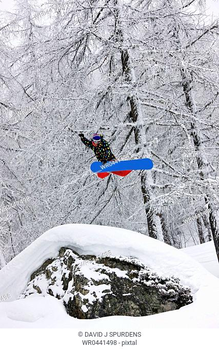A snowboarder jumping high in the forest makes the grab