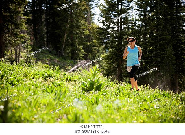 Runner on Catherine's Pass trail, Wasatch Mountains, Utah, USA, Wasatch Mountains, Utah, USA