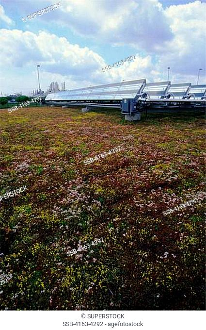 USA, MICHIGAN, NEAR DETROIT, DEARBORN, FORD ROUGE FACTORY TOUR, PLANTS ON LARGEST LIVING ROOF, SOLAR PANELS
