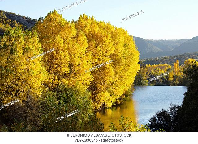 Nature landscape, autumn colors. Ebro river, Burgos Castilla Leon. Spain Europe