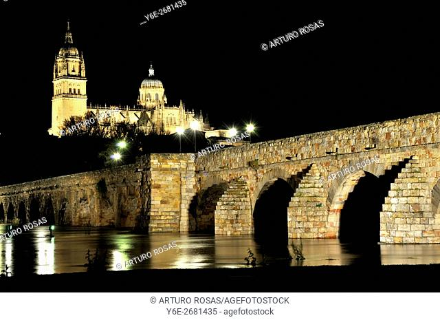 Roman bridge and old cathedral, Salamanca