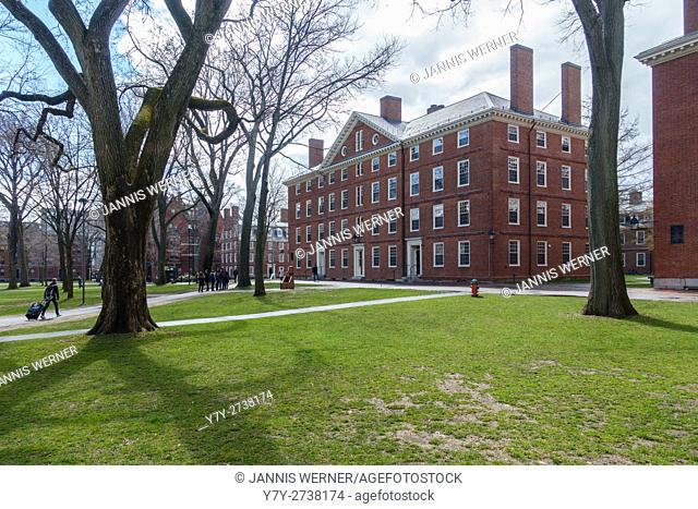 View of Harvard University campus on a sunny day in spring, Cambridge, MA, USA