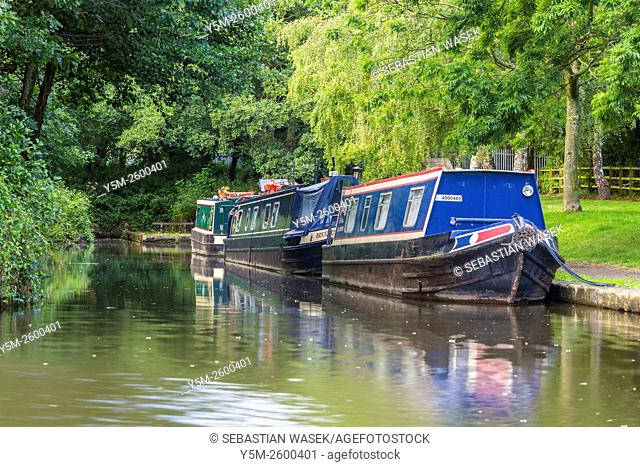 Llangollen Canal, Trevor, Denbighshire, Wales, United Kingdom, Europe