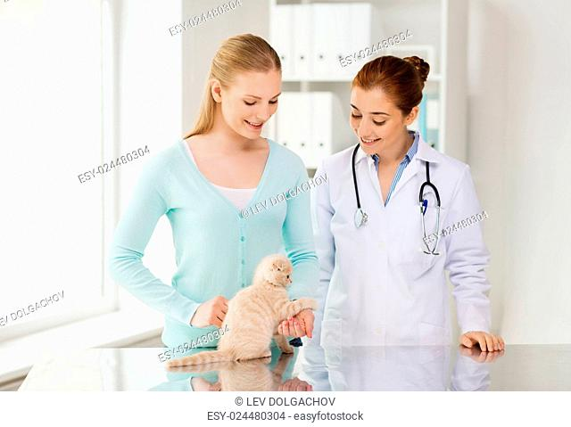 medicine, pet, animals, health care and people concept - happy woman and veterinarian doctor with stethoscope checking scottish fold kitten up at vet clinic