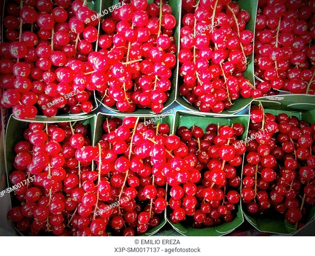 Red currants for sale