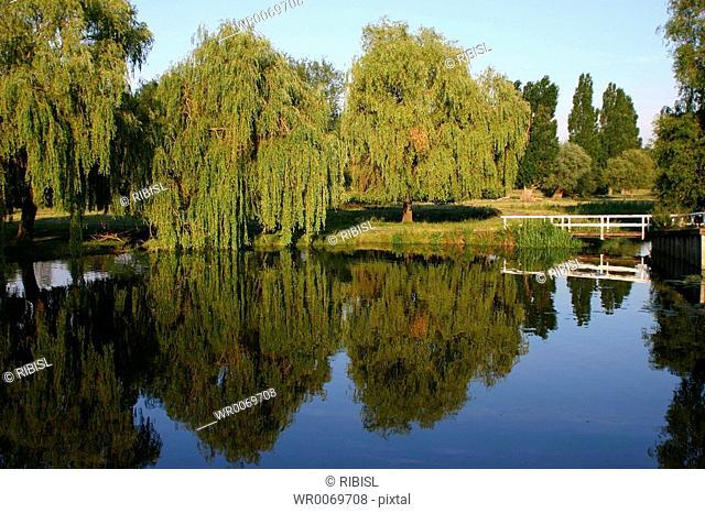 Cambridge - river Cam