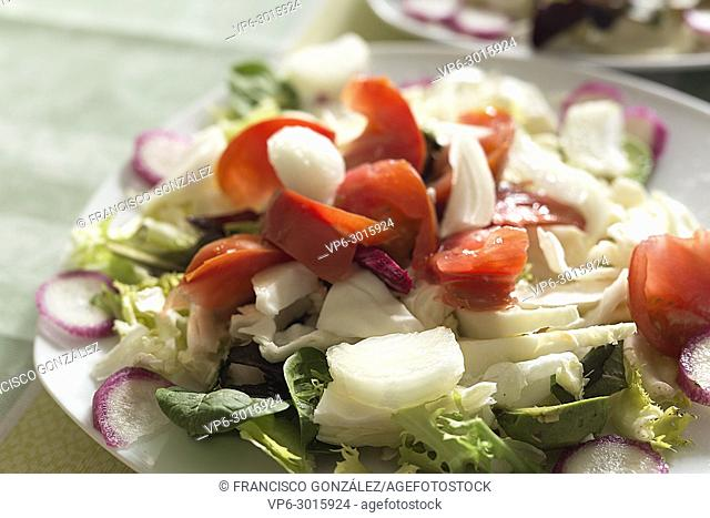 Salad plate with variety of vegetables. Horizontal shot