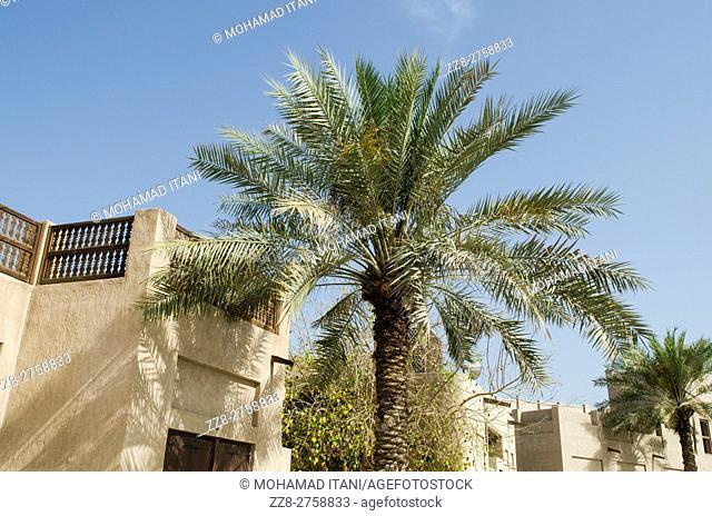 Traditional Arabain architecture Dubai United Arab Emirates