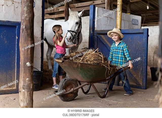 Boy pushing wheelbarrow in stable