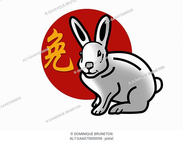Chinese zodiac sign for year of the rabbit