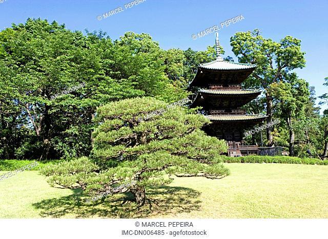 Japan, Tokyo, Meguro district, ancient pagoda