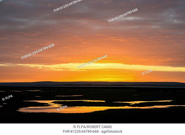 View of flooded coastal grazing marsh habitat at sunrise, Elmley Marshes N.N.R., North Kent Marshes, Isle of Sheppey, Kent, England, December