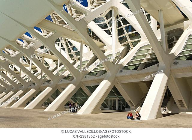 Detail of Príncipe Felipe Sciences Museum,City of Arts and Sciences, by S. Calatrava. Valencia. Spain