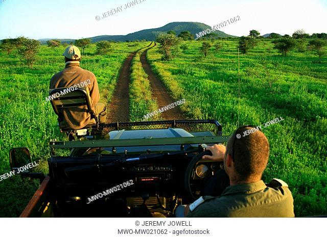 safari 4x4 sunrise game drive with driver and tracker at Amakhosi Lodge, in AmaZulu Private Game Reserve, in KwaZulu-Natal, South Africa 11-19-2007