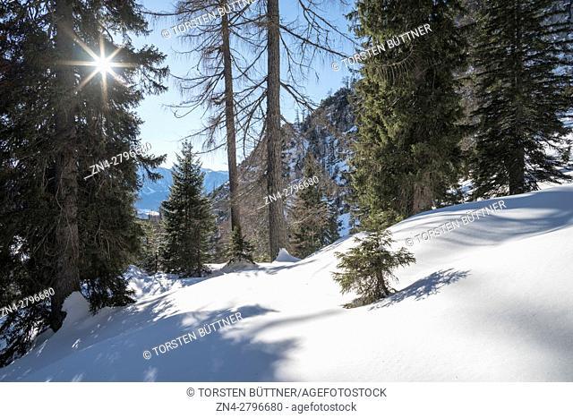 Hoher Nock mountain area in Nationalpark Kalkalpen in Winter, Upper Austria, Austria