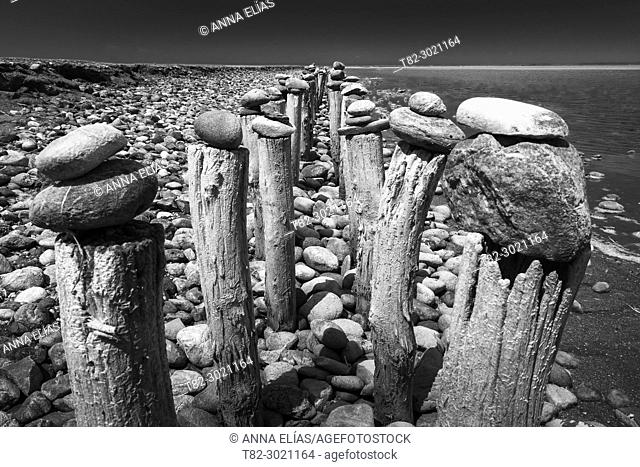 black and white landscape stones on wooden sticks in the Natural Park of La Camargue, France, Europe