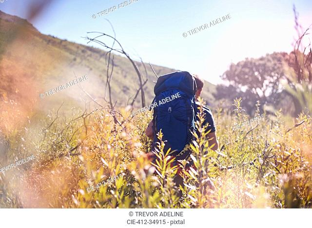 Young man with backpack hiking in sunny field