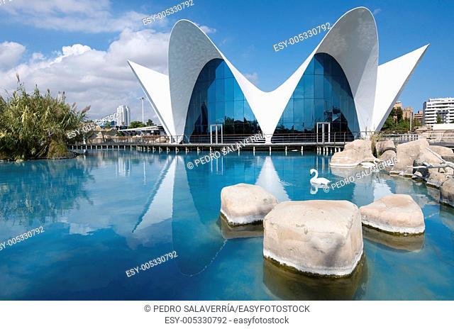 Aquarium known as Oceanografic  Located in the City of Arts and Sciences is the largest aquarium in Europe  Valencia, Spain